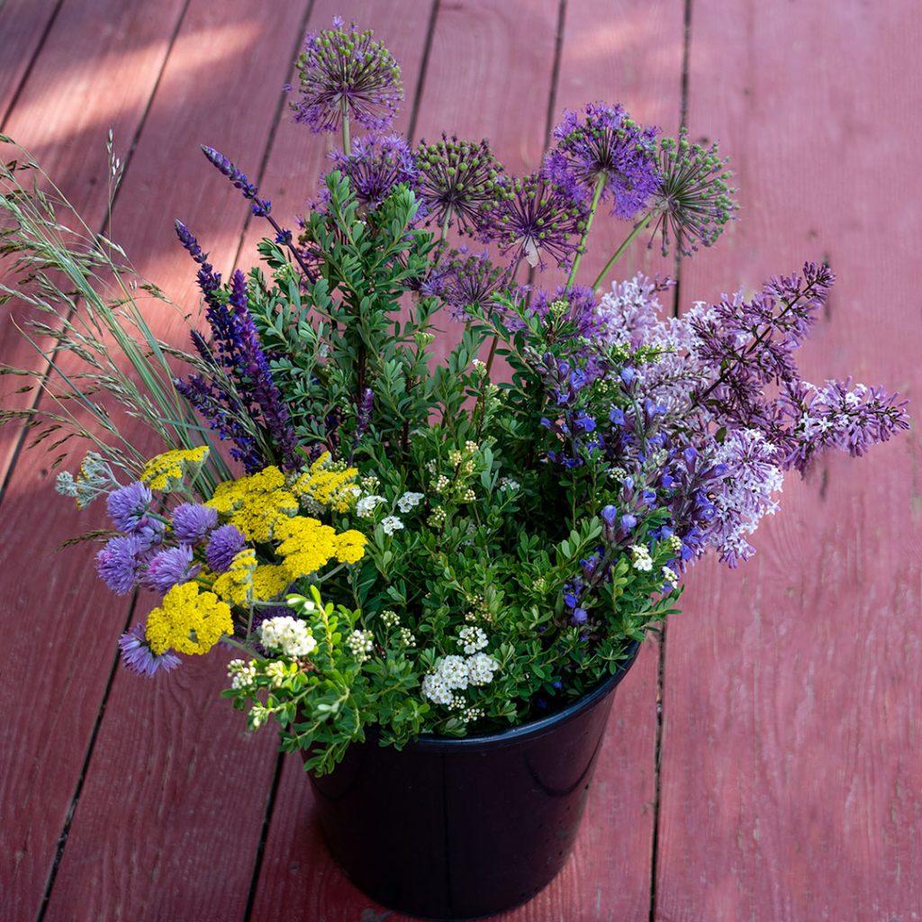 Early June DIY Bucket